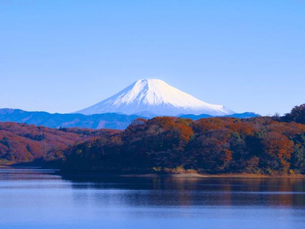 Tour Nhật Bản 4N3D – Narita – Fuji – Saitama – Tokyo – Ibaraki 4