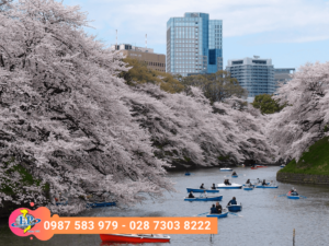 tour-tokyo-yamanashi-fuji-dulichlephong-1